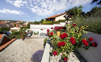 Ubytování Valtice - penzion Réva růže