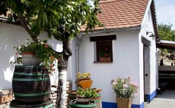 Ubytování Valtice - penzion Réva sklep